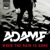 Adam F - When The Rain Is Gone (Delta Heavy Remix)