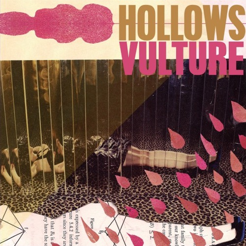Hollows - V Is For Vulture