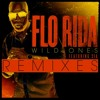 Flo Rida - Wild Ones feat Sia (Guy Scheiman Vocal Remix)