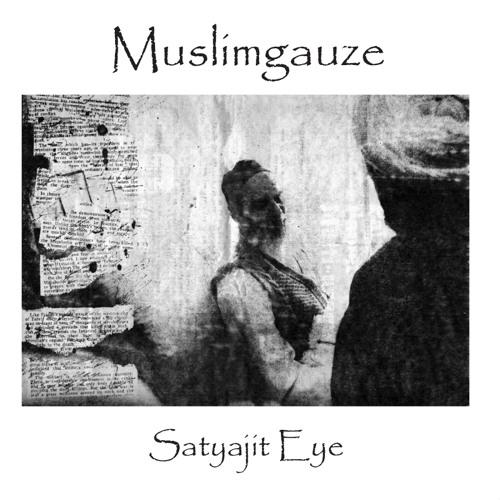 Satyajit Eye sample