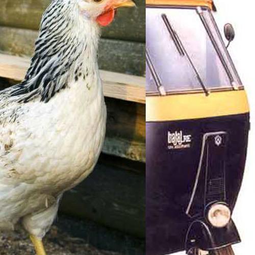 Jjj - Auto and Chicken