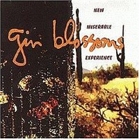 """Hey Jealousy"" - Gin Blossoms"