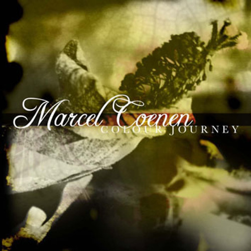 Marcel Coenen - New Race