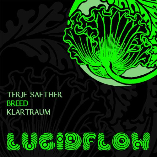 LF026 - Terje Saether - Breed - Klartraum Remix