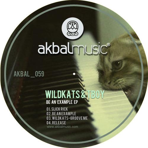 WiLDKATS & Tboy - Be An Example EP - Akbal Music