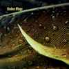 Alter Bridge - Broken Wings [hunkE Hip-Hop Remix]