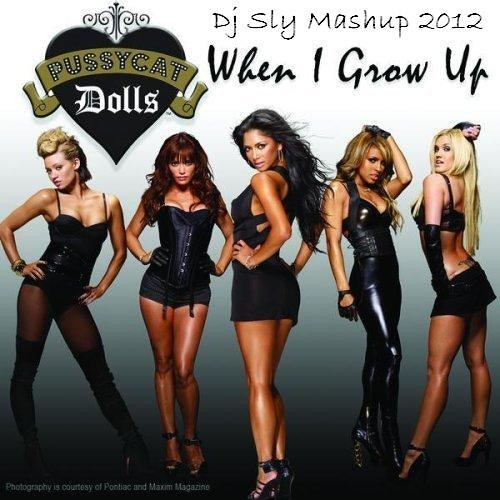 PussyCatDolls & Dirty South - When I Group Up [Dj Sly Mashup Mix 2012]