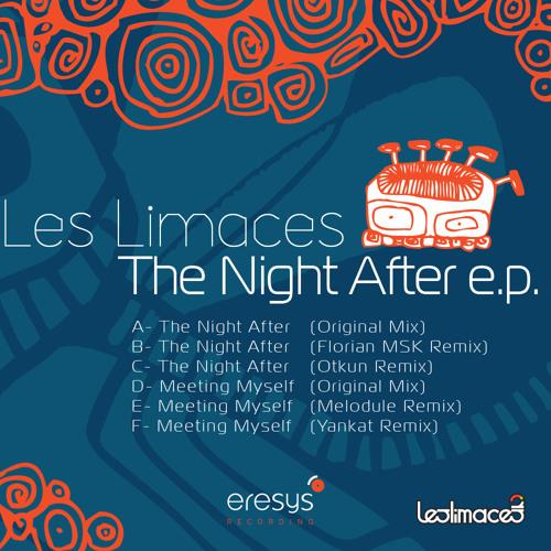 Les Limaces - Meeting Myself (Original Mix)