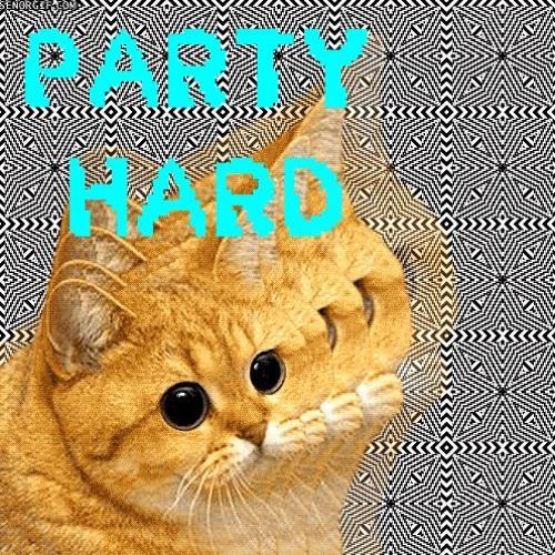 Tim Karplus - Party Hard (Subtl Remix)