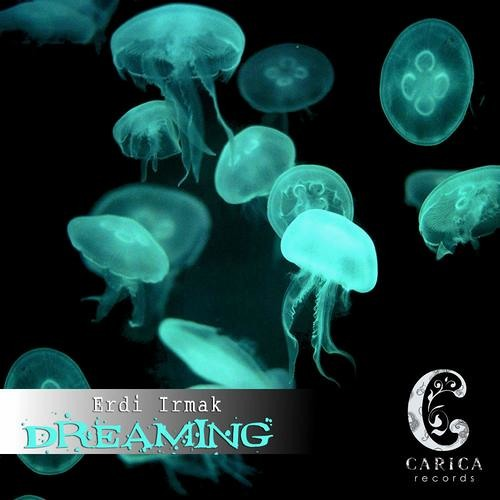 Erdi Irmak - Dreaming - Sven Hauck Remix - Clip