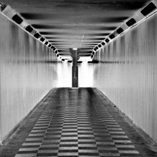 Camino de servidumbre (The Road to Serfdom)