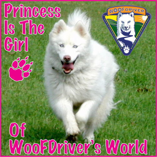 WooFDriver's Dogs