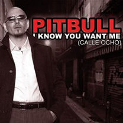 Pitbull - I Know You Want Me (Chris Fader Remix)