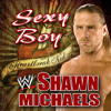 Shawn Michaels Theme Sexy Boy (COVER)