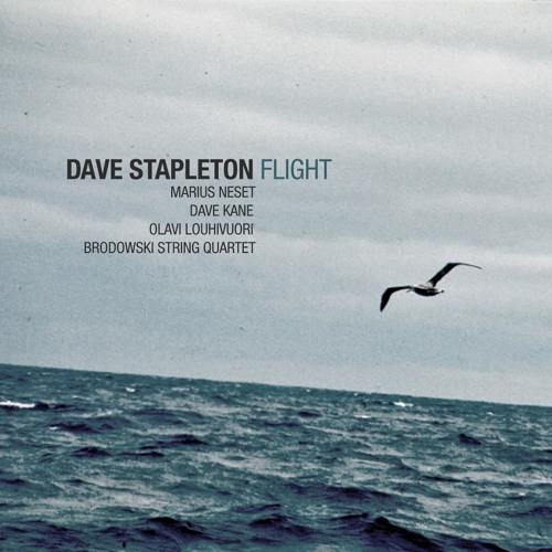 DAVE STAPLETON 'Flight'