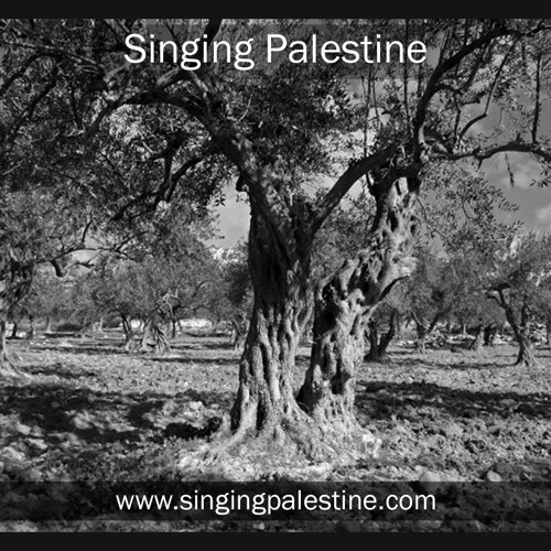 Ya bai miriam, Palestinian song (folk), by Quentin Dujardin – Belgium , feat. El Funoun – Palestine