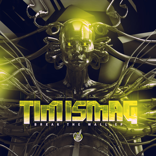 B.Tim Ismag - Desty Rave (OUT NOW!!!)