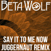 Say It To Me Now (The Juggernaut remix)