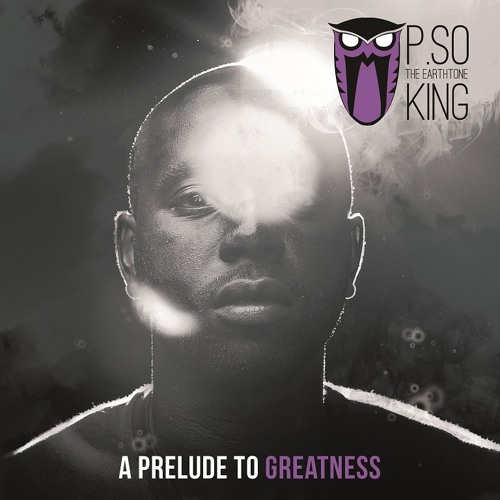 P.SO the Earth Tone King -  Making That Noise