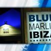 Blue Marlin Ibiza 2013