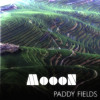 MoooN - Paddy fields (excerpt)