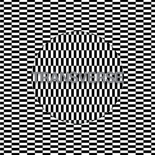 Carter Tutti Void - V4 studio (Slap 2) [Dazed & Confused Exclusive]