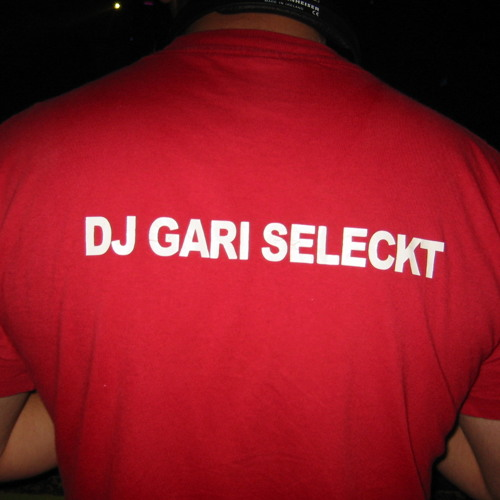 PROMO - GARI SELECKT - SOMETIMES I DONT WANNA BE A STAR ( FIRST PROJECT ON FL 10)