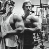 Farewell Schwarzenegger: the roots of the