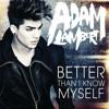 Adam Lambert- Outlaws of Love (Flexx cover)