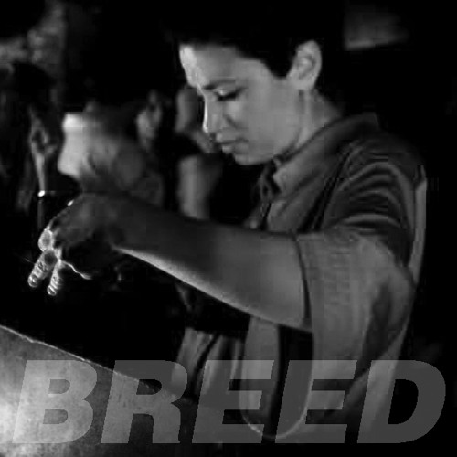 BREED Podcast 15 - RUFUS&Bambi: MILK N SYNTH MIX