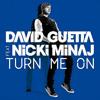David Guetta Sidney Samson Ft Nicki Minaj Florida Turn Me On Girls At Adam Brothers Bootleg Mp3