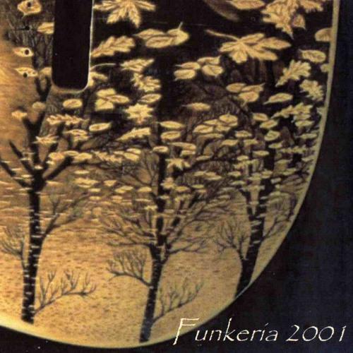 07 a guitar for jazzin'(FUNKERIA2001)