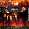 Surinder Sangha ft. Amar Singh & Prime– UK Riots