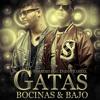Farruko Feat Daddy Yankee - Gatas, Bocinas y Bajo (By Los Piratologos) (Www.FlowHoT.NeT)