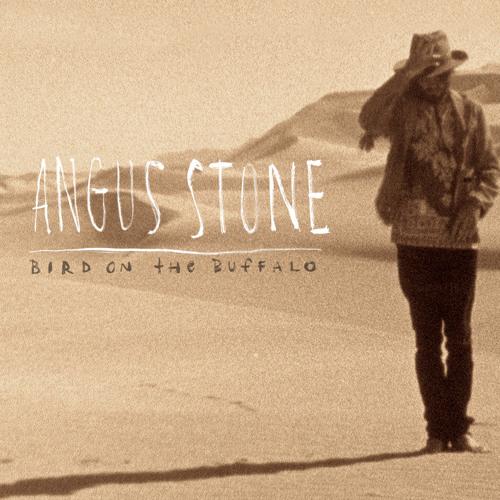 Angus Stone - Bird On The Buffalo (Radio Edit)