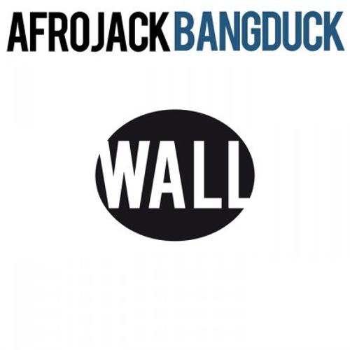 AfroJack VS Gwen Stefani- Hollaback Duck (Rigo Mash Up) *updated file in description