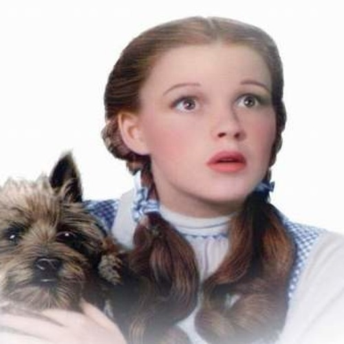 Dorothy and Toto landed near Toluca (2005)