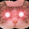 Kitty Dagger Stare mp3