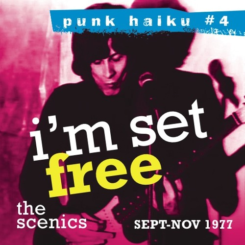 PUNK HAIKU 4/The Scenics
