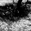 H.EXE - Dunkelheit (Burzum Cover)