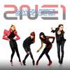 Dj Lucas Fierce ft. 2NE1 - Don't Stop The Music (Danza Kuduro Mix)