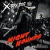 X Ray Dog - Final Hour
