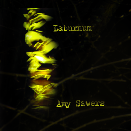 Lying With You (from 'Laburnum') - Amy Sawers