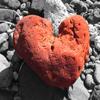 16 Love (Reprise)