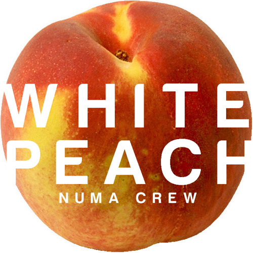 "WPR002 - Numa Crew - Infama / Nobody Can Stop Us / Feeling Macaco VIP - 12"" & Digital Release"