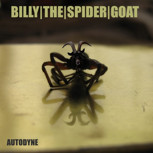 Billy the spider goat mp3