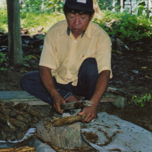 Ayahuasca Icaro - Shipibo Shaman Benjamin Ochavano