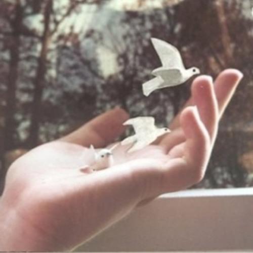 Free fallin' (Tom Petty)