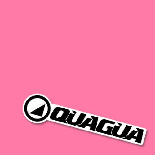 QUAGUA - FANATIC (Original Mix)