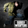 A Guy Called Gerald - Voodoo Ray (Sonny Wharton Re-Edit)  FREE DOWNLOAD